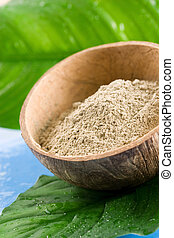 Spa clay - Green clay in an organic shell. Spa and beauty...