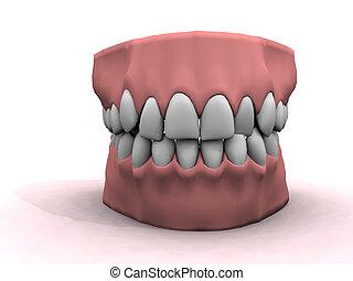 bom, dentes