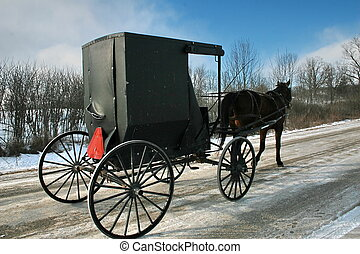 amish lifestyle - An Amish horse and buggy carriage.