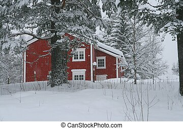 Red house in snow - Red house in a forest when the snow is...