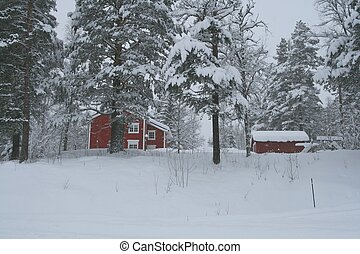 House in snow - Red house in a forest covered in snow