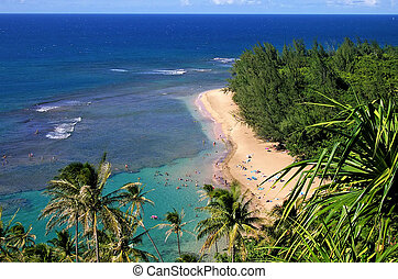 Beautiful Beach - Looking down on a beautiful beach with...
