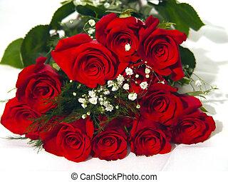 Closeup of a Dozen Roses - Macro image of a dozen red rozes...