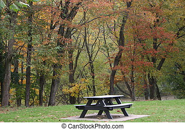 Picnic Table 2 - Picnic table in the woods during autumn