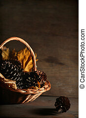 Autumnal still life - Colorful autumnal leaves on a dark...