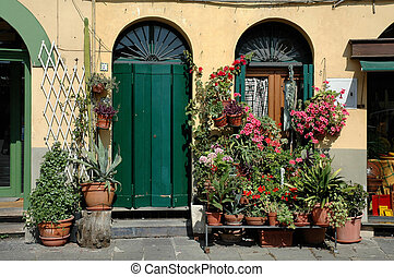 Storefront In Lucca - Typical storefront in Lucca in the...