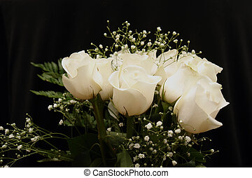 Image of a Dozen White Roses - Image of white roses on a...