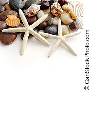Tropical vacation - Starfish, pebbles and seashells on white...