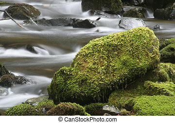 Stream and Mossy Rock - Photo of rushing water and a large,...