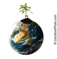plant growing on planet earth on white - concept