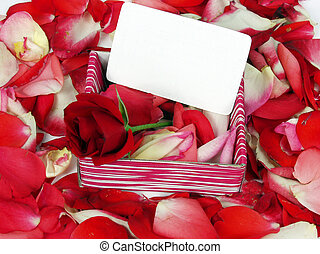 Red rose - red rose on a gift box with blank card for...