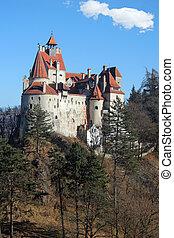 salvado, castillo, rumania