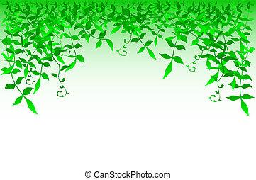 Bushy - illustration of bushy foliage
