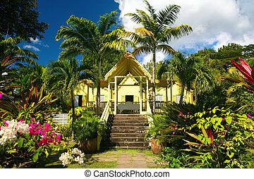 st.kitts - tropical garden on st. Kitts