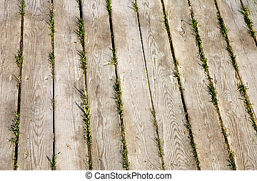 Wooden walkway - A close-up of a weathered wooden walkway