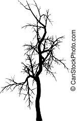 Zima, drzewo