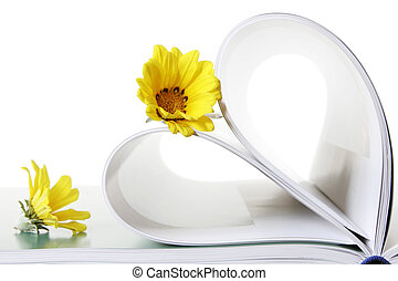 Book and Flowers - Two daisies wuth book pages in heart...