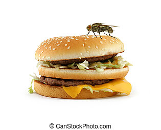 home fly sitting on appetizing hamburger