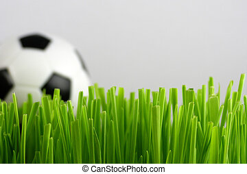 soccer ball in grass - Close-up of green grass with soccer...