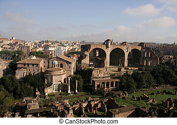 Forum Romanum - Birdseye view of Forum Romanum with Santi...