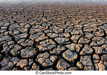 Parched land  - Cracked, parched land after a drought
