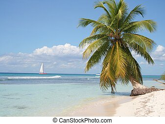 Deserted Island - A sailboat passing by a deserted island in...