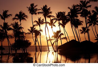Tropical Sunset - A sunset over a pool on a tropical island