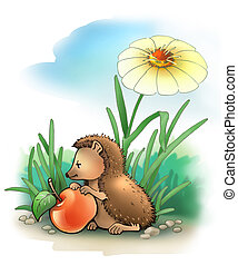 HEDGEHOG 2 - Little hedgehog with apple (summer)