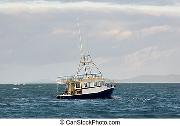 Fishing boat-Keppel Bay - A fishing trawler trawls for a...