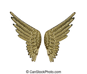 Gold Wings  - Gold Fairy Angel Wings Isolated on White