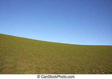 grazing land and blue sky - A green field with a blue sky in...