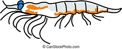 krill - marine krill isolated on white drawn in toddler art...