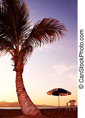 Beach Sunset - Parasol, chair and coconut palm tree at...