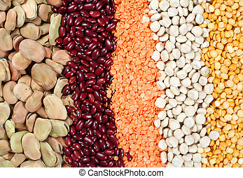 Pulses - Various dried legume seeds: broad beans, small red...