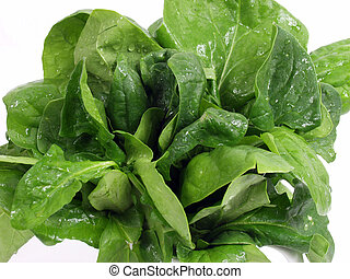 Spinach - fresh green spinach isolated on white background...