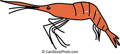 shrimp isolated on white drawn in toddler art style