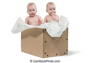 dois, bebê, gêmeos, caixa