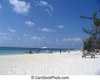 bahamas freeport