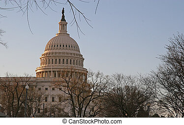 Early Morning Capitol - US Capitol building in early morning...