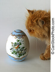 Easter egg and red cat