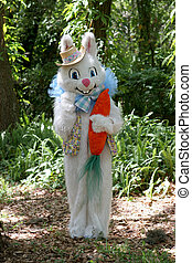 Easter Bunny In Woods - A full body portrait of the Easter...