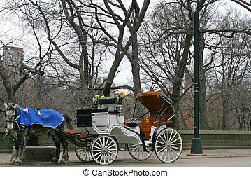 Horse and Carriage - Horse and carriage at central Park in...
