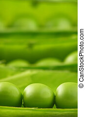 pea pods - Close-up of green pea pods with depth of field