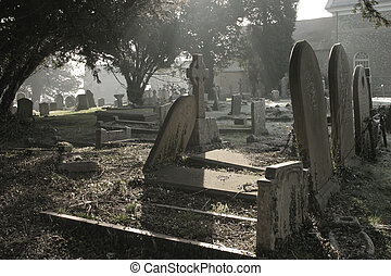 Atmospheric cemetery scene in contre jour, taken early on a...