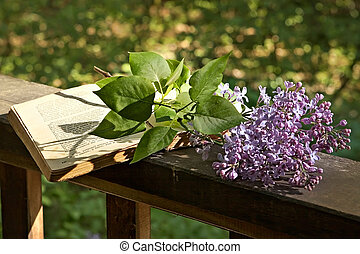 Book of poetry and lilac branch - Romantic evening in the...