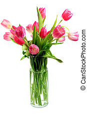 Pink Tulips - Beautiful pink and white tulips Tulipa in vase...