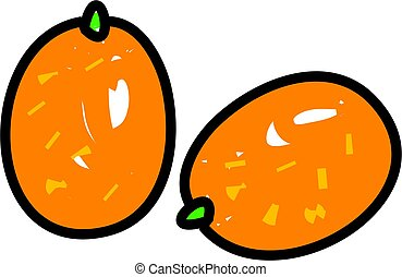kumquat citrus fruit isolated on white drawn in toddler art...