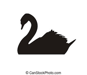 Black swan - Black silhouette of a floating swan on a white...