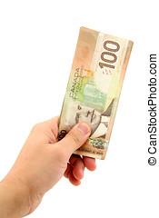 mão, segurando, canadense, dólares