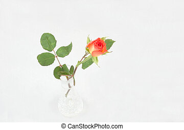 single rosebud in a vase - single rosebud in crystal vase